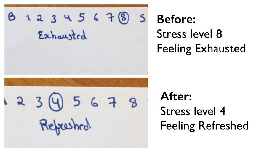meditation results
